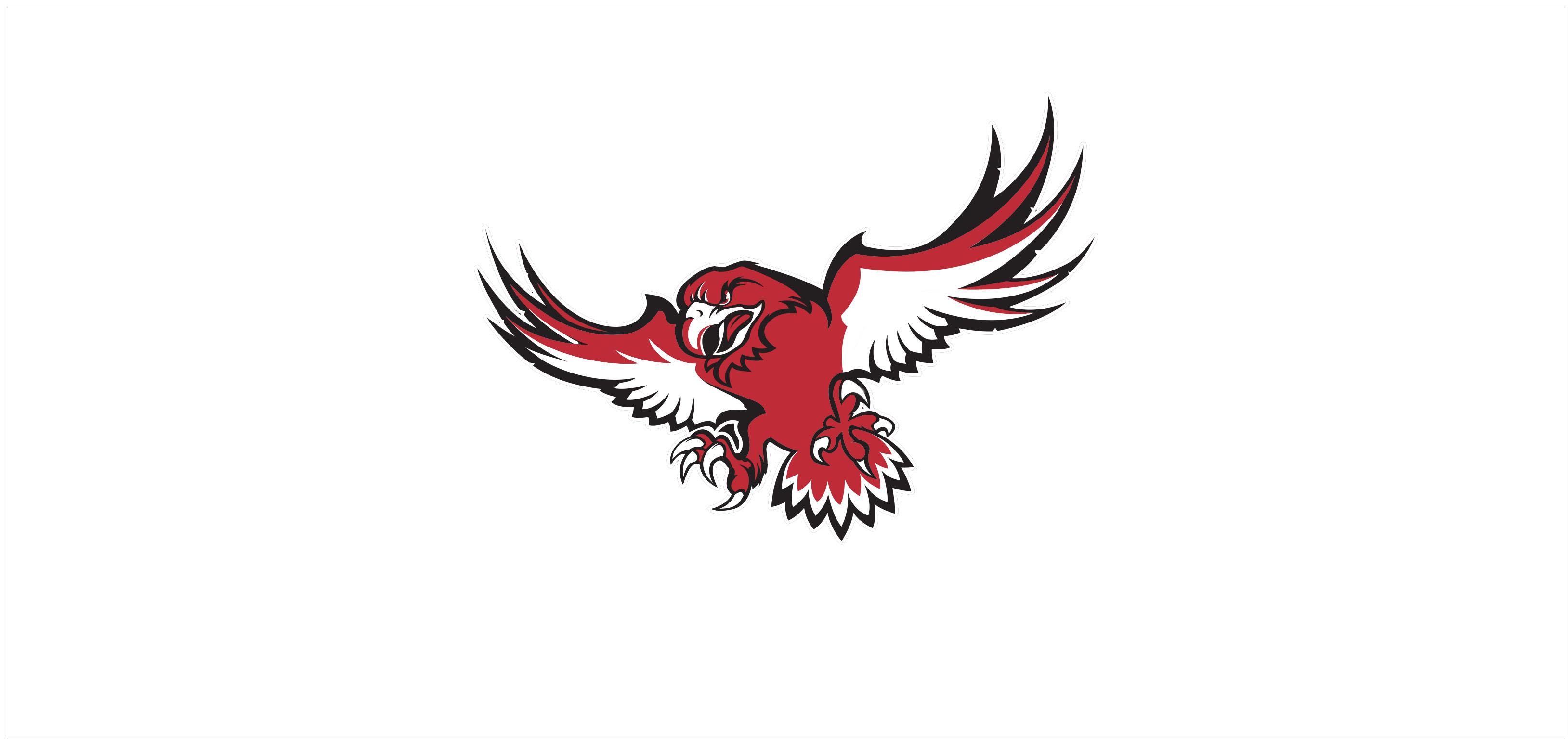 Hawk.jpg