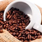 coffee square.jpg