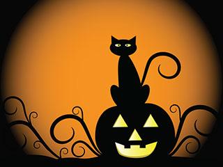 Halloween pumpkin and cat.jpg