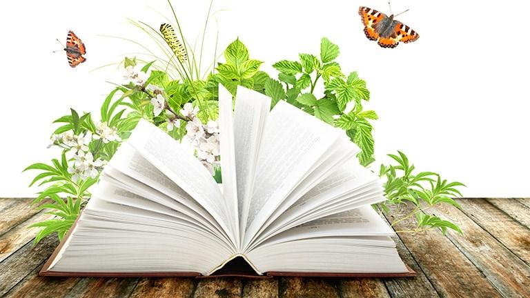 Newsletter book spring.jpg